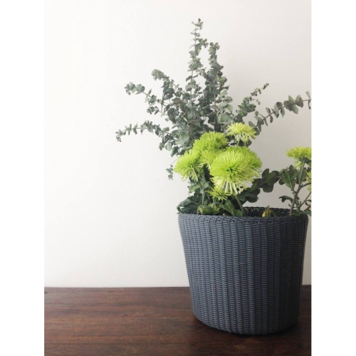 PALOROSA Korb Pot Medium carbon